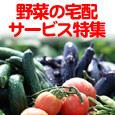 野菜の宅配サービス特集