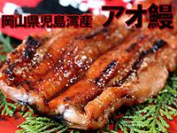 岡山県 児島湾産 天然アオ鰻(あおうなぎ)